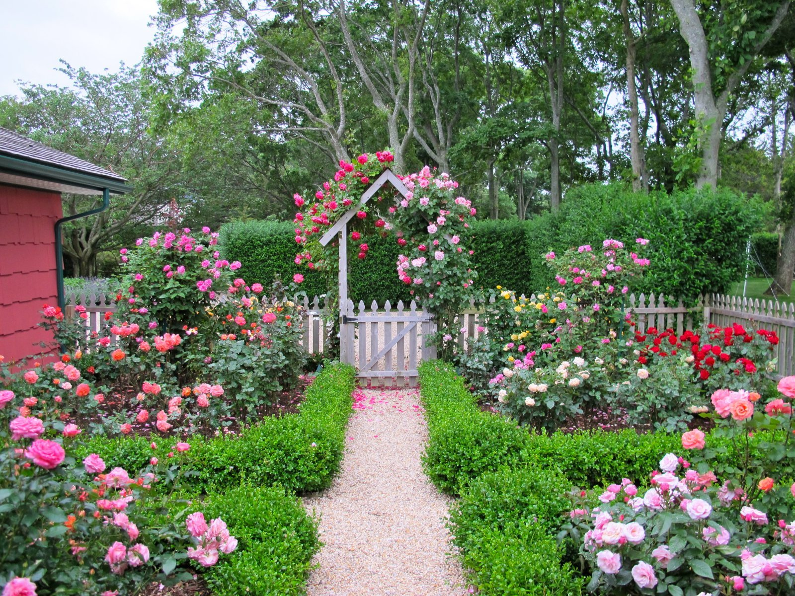 Cottage garden design with roses wilson rose garden for Backyard cottage plans