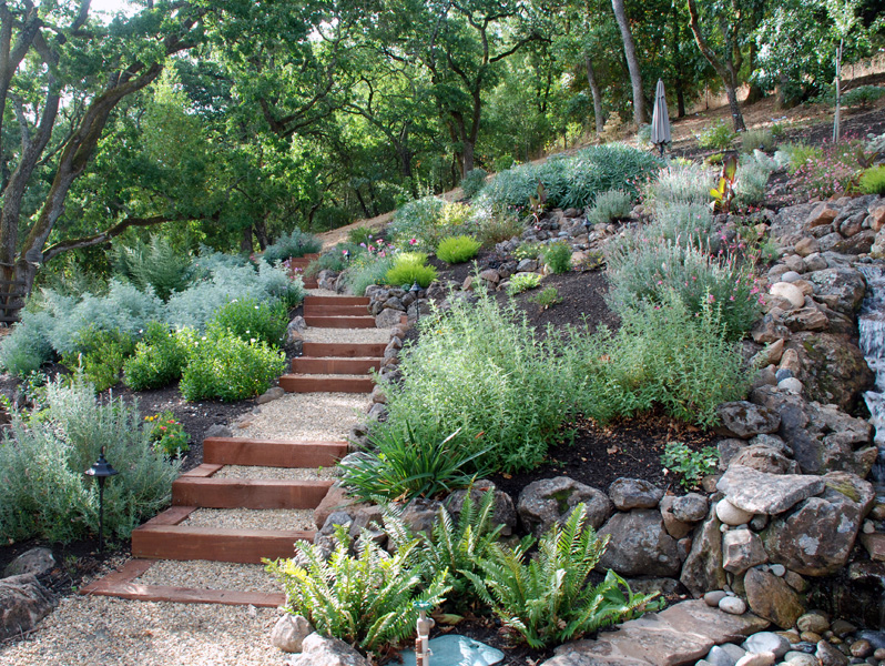 Drought Tolerant Garden Design drought tolerant design Tips For Drought Resistant Landscaping Plan And Design Your Garden