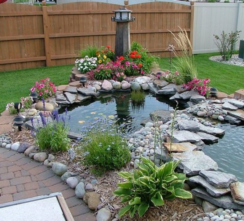 Fish Pond Design to Alive the Backyard Look – Wilson Rose Garden