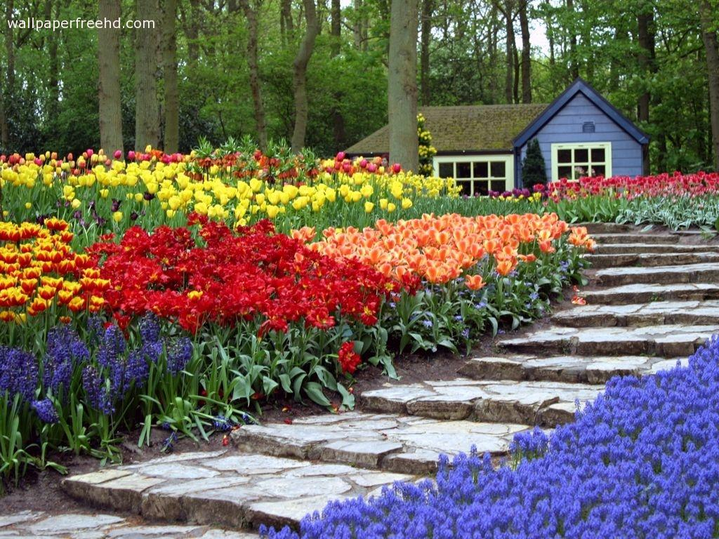 gorgeous flower gardens ideas