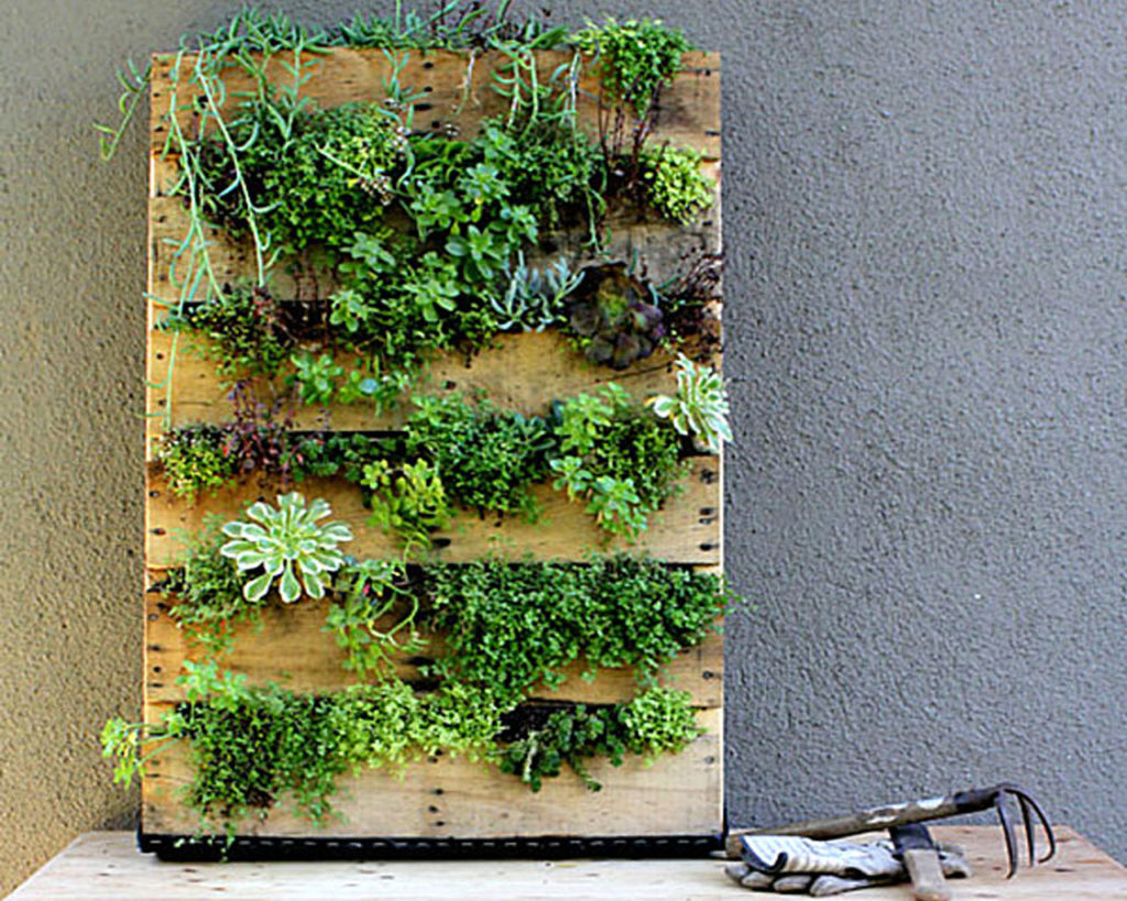 Inspiring indoor garden ideas