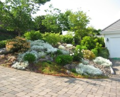 Landscaping Rock Garden Ideas