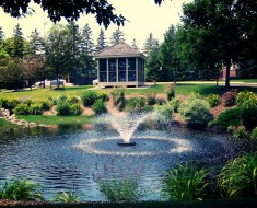 Landscaping ponds in Wilson NC