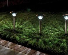 Shopping for Solar Garden Lights