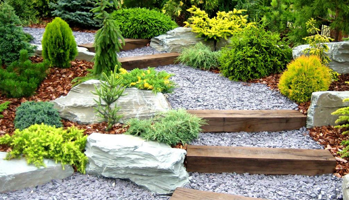 Simple Rose Garden: Transforming Your Pond With Landscaping With Rocks