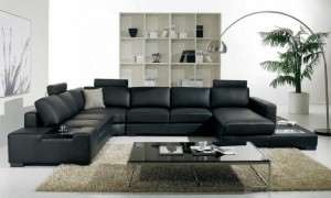 Sofa Designs for the Living Room