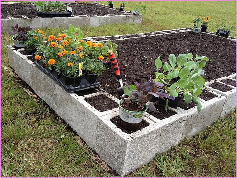 Raised Garden Beds Designs You Can Finish In Less Than A Day Wilson Rose Garden