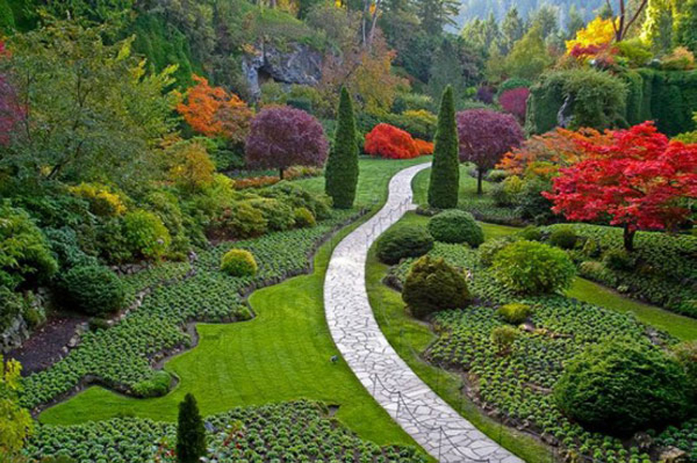Flower Garden Design flower garden design pictures cadagu garden idea 10 Photos Of The The Best Flower Garden Tips