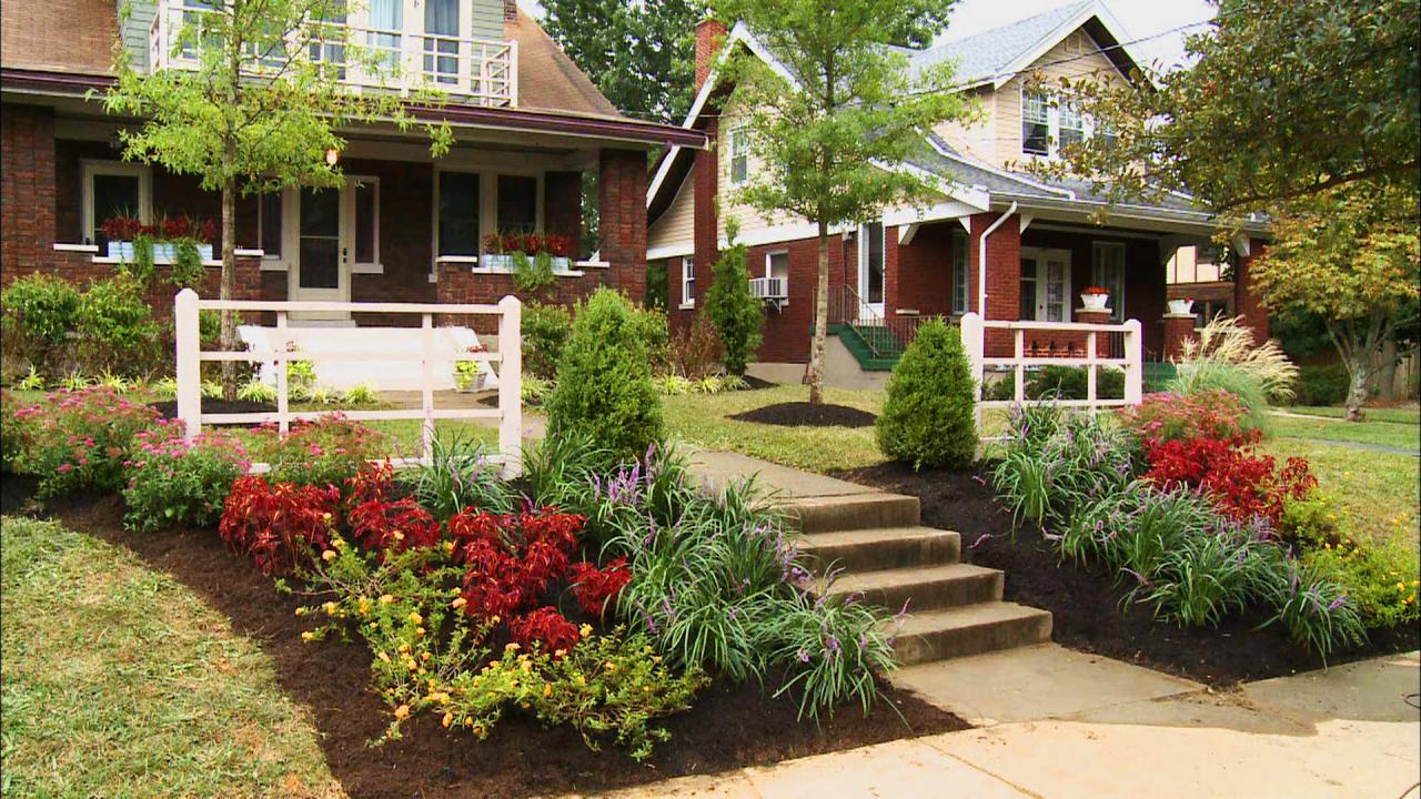 Home front garden design wilson rose garden for Front landscape design
