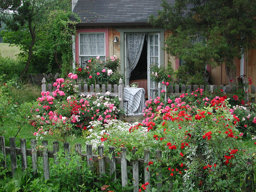 ideas for creating the cottage garden with roses