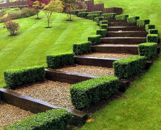 landscaping in Surrey