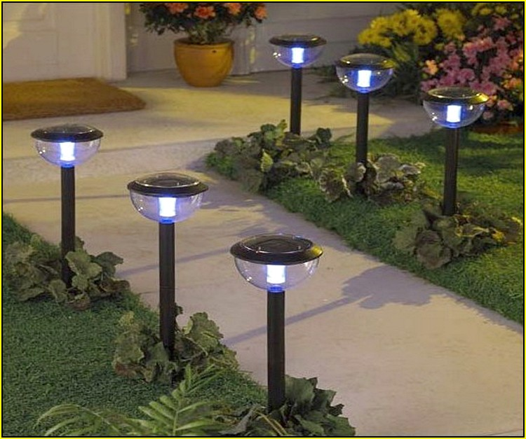 Solar Garden Lights Guide Wilson Rose Garden