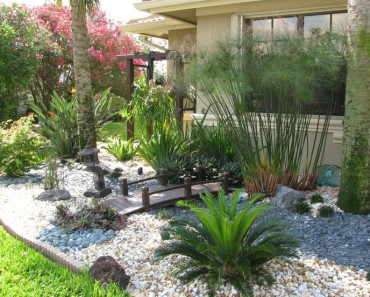 Landscaping shrubs in Wilson NC