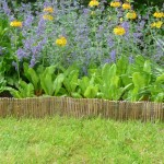 bamboo garden edging fence little