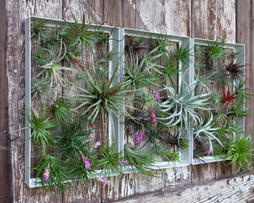 garden wall art paintings