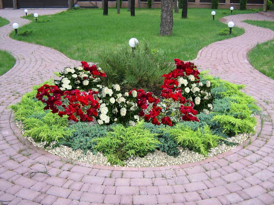 ideas for landscaping with roses