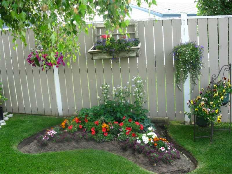 landscaping with roses in wilson